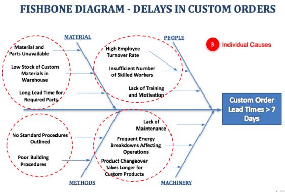 Fishbone Diagram - Individual Causes